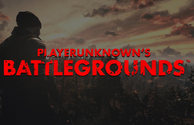 PLAYERUNKNOWNS BATTLEGROUNDS free download