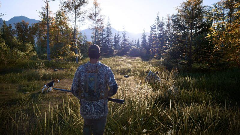 Hunting Simulator 2 download free